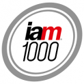 IAM Patent 1000 – the World's Leading Patent Professionals